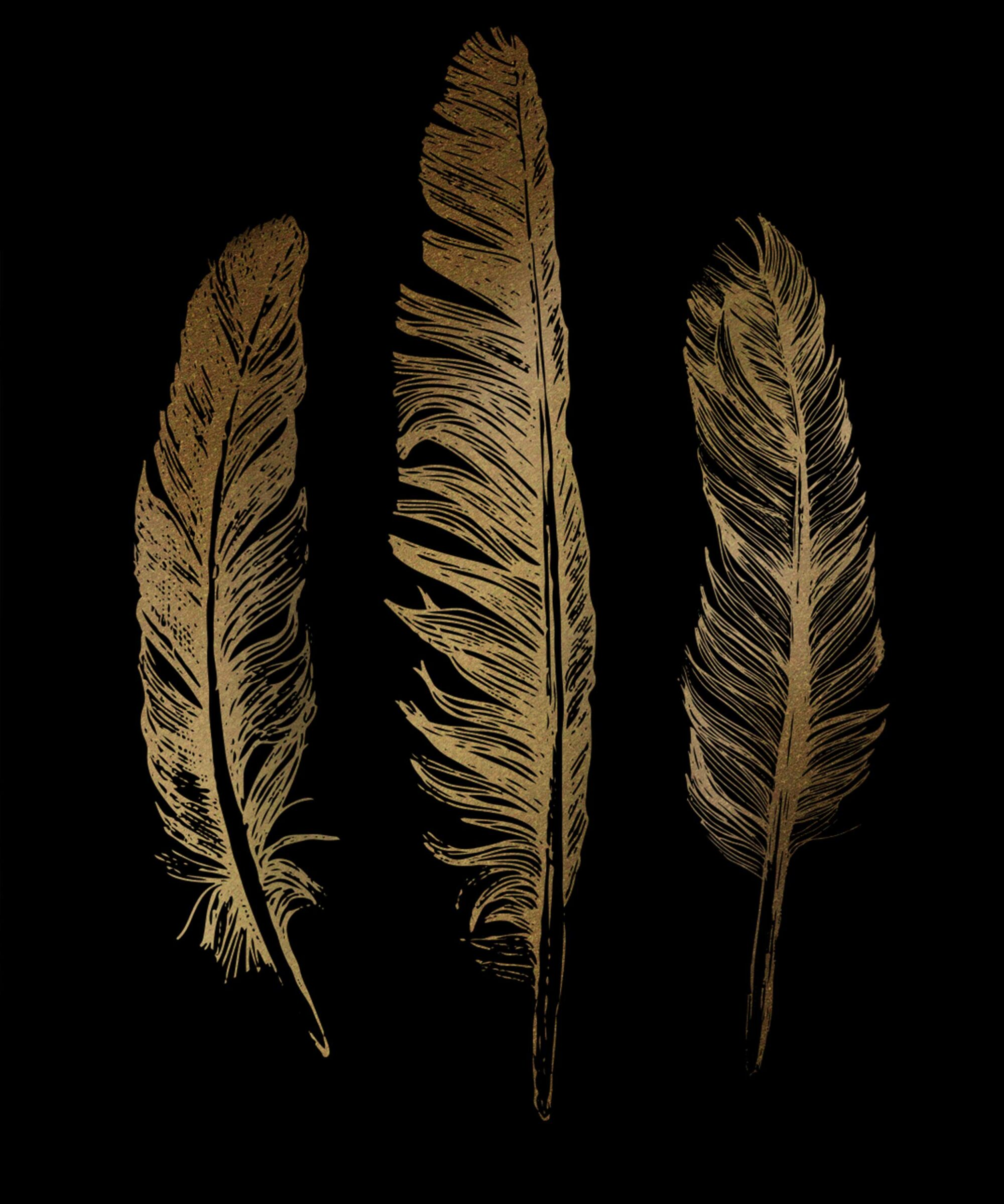 three golden feathers on a black background